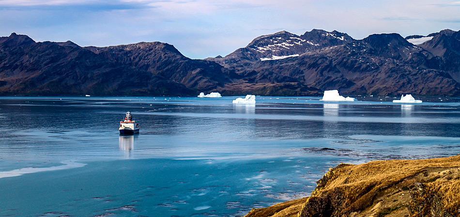 der Eisbrecher «Polarstern» in der Cumberland Bay in Südgeorgien. Foto: Thomas Ronge, AWI