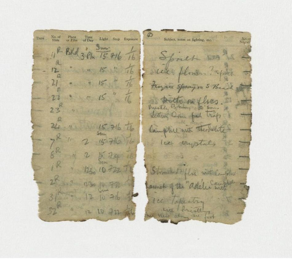 Die Auszüge aus dem Notizbuch zeigen einen Eintrag von Levick: Priestley, Dickason und Browning beim Aussetzen einer Fischfalle und Campbell mit dem Theodoliten. © NZAHT